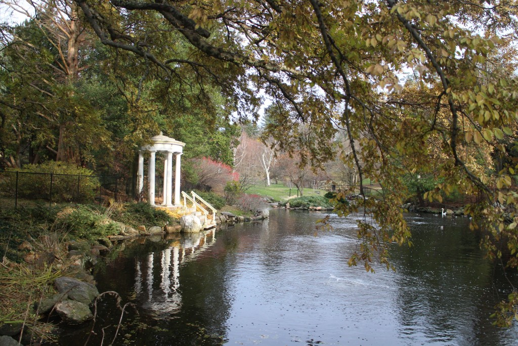 Gazebo and Pond 2014-11-25 15.02.58